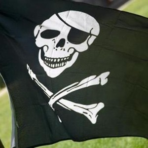 Pirates can be stopped by cutting off their resources, says Google.